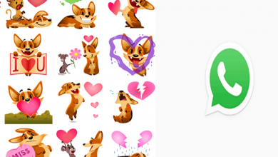 Photo of Whatsapp is having a new update and introduced new biscuit stickers on Android