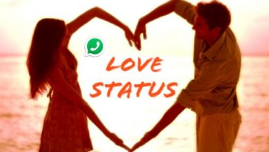 Photo of 100+ Short Best Love Status for Whatsapp , Attitude, Sad, Lonely & Quotes