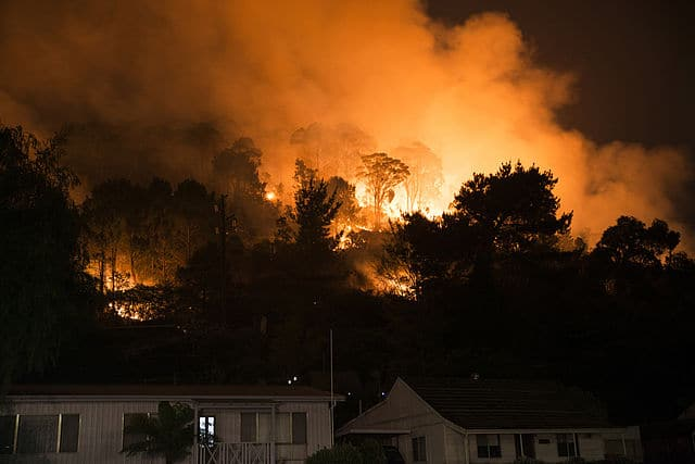 Photo of Red Cross Under Scanner For Withholding Two-Thirds Of Bushfire Donations