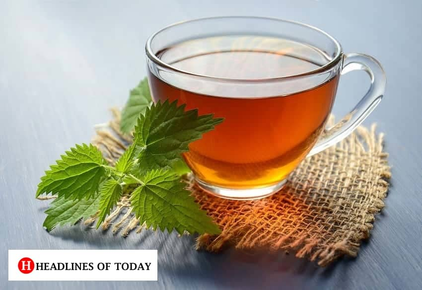 Photo of Herbal Green Tea Health Benefits, Research