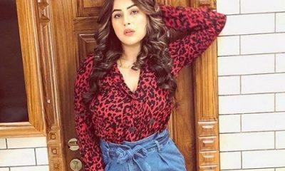 Shehnaz Kaur Gill Net Worth