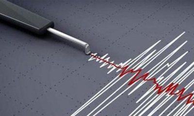 Terror felt in Delhi after 3.5 magnitude earthquake hits