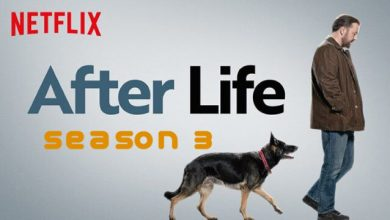 "Photo of Netflix renews the finale of ""After Life"" penned by the multi-talented Ricky Gervais!"